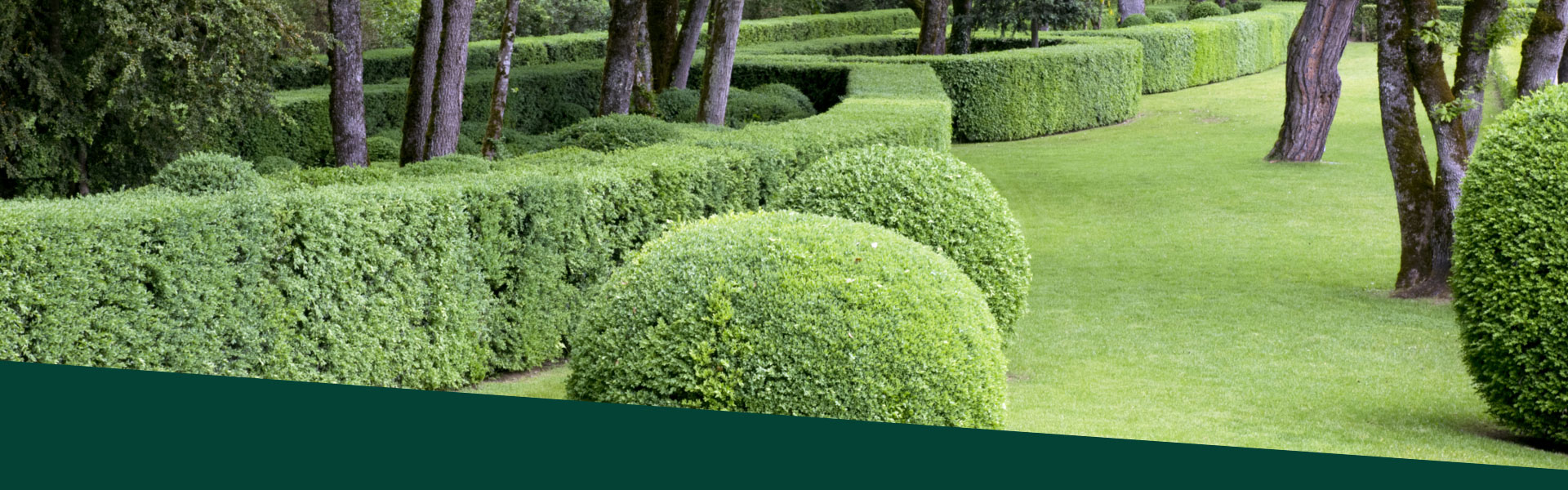 A d id es paysagiste pineuilh 33 et ses environs for Entretien jardin bergerac